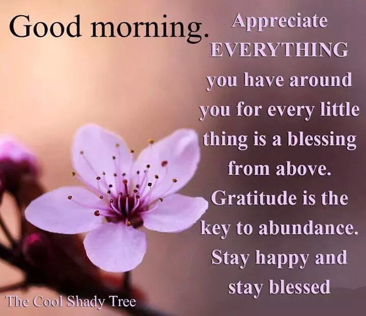 Good Morning Universe Quotes : Gratitude is the key to happiness