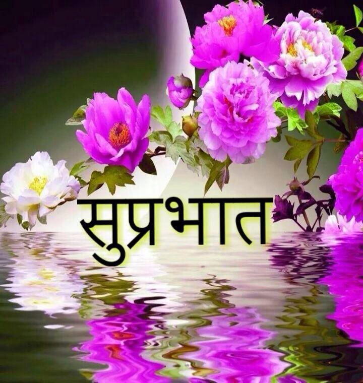 Suprabhaat Flowers